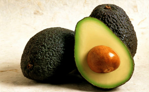 aguacate (1)