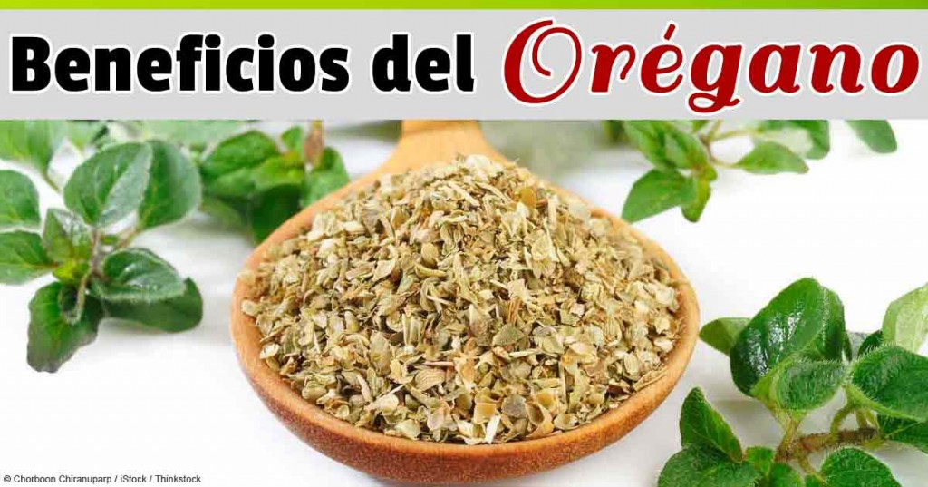 beneficios-del-oregano-fb
